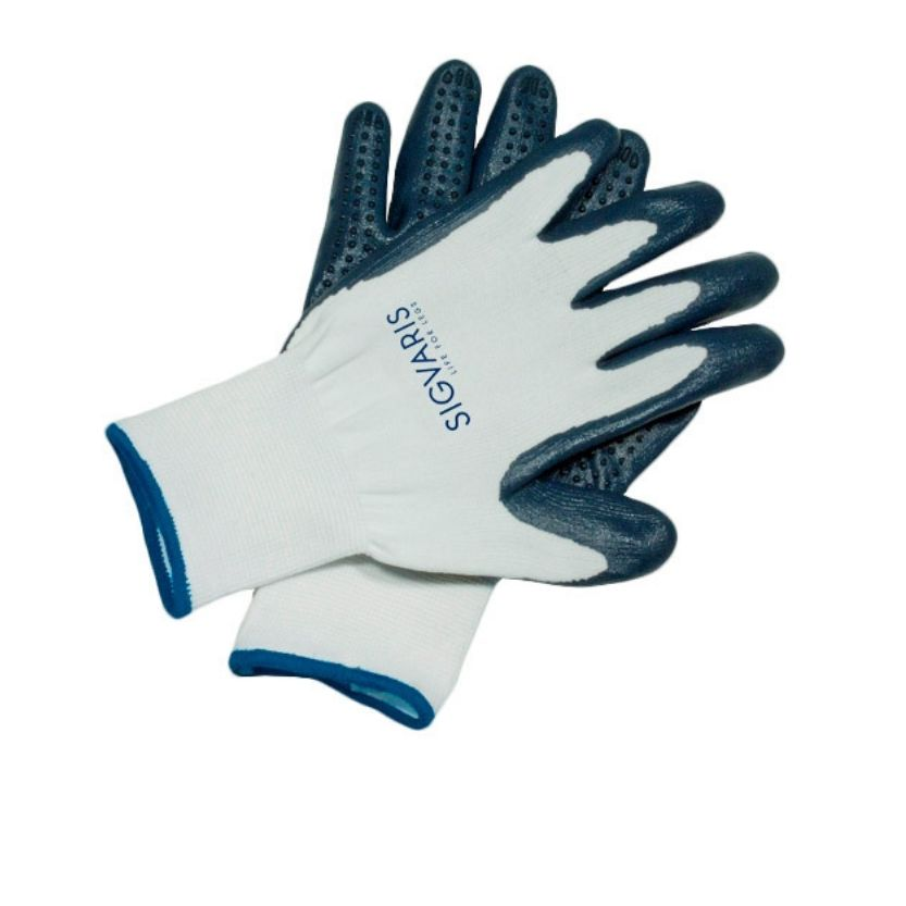 Latex Free Gloves